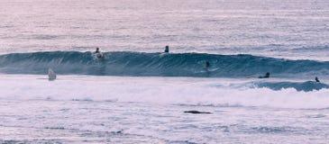 Surfistas novos foto de stock