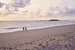 Surfistas que andam na praia fotos de stock
