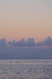 Surfistas que esperam no nascer do sol foto de stock royalty free