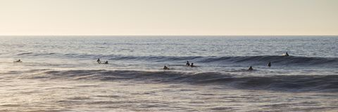 Surfistas que esperam uma onda Imagens de Stock