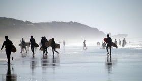 Surfisti immagine stock
