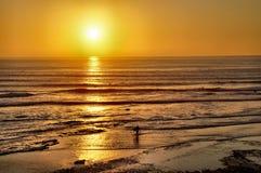 Surfisti che entrano al tramonto Immagini Stock Libere da Diritti