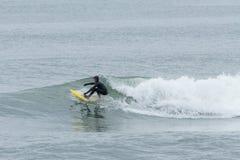 Surfisti di altezze della spiaggia Immagine Stock