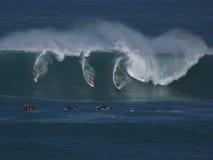 Surfisti di Eddie Aikau Fotografia Stock