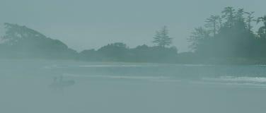 Surfisti di Tofino su verde Fotografie Stock Libere da Diritti
