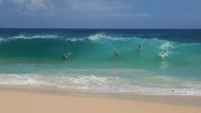 Surfisti e nuotatori del corpo alla spiaggia sabbiosa archivi video