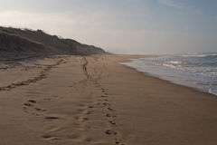 Surfować plażę w półmroku fotografia royalty free