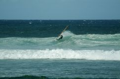 surfować na szczyt Zdjęcia Stock