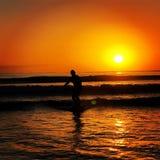 surfowa? zdjęcie stock