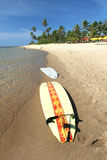 Surfplanken Stock Afbeeldingen