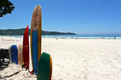 Surfplanken op het Witte Strand van het Zand Royalty-vrije Stock Foto's