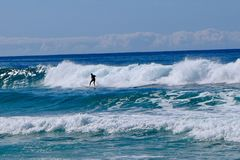 Surfs up on Mollymook beach Royalty Free Stock Photography
