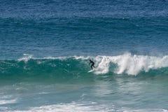 Surfujący w Fuerteventura, wyspy kanaryjska Obrazy Royalty Free