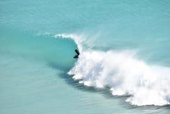 surfuje surfować Fotografia Royalty Free