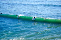 surfuje surfować Obraz Stock