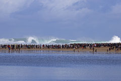 Surfwatchers Royalty Free Stock Photography