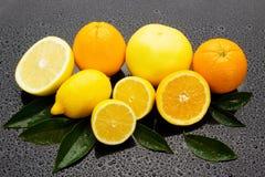 surgace лимона грейпфрута померанцовое влажное Стоковая Фотография