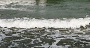 Surge of the Baltic Sea stock footage