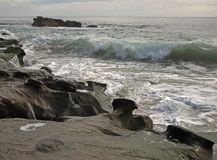 Surge at Papou`s Beach. Incoming wave at Papou`s Beach at Laguna Beach, California, USA stock photo
