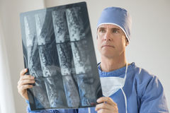 Surgeon Analyzing X-Ray Report. Mature male surgeon analyzing X-ray report in hospital Stock Photography