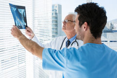 Surgeon and doctor discussing x-ray report. In clinic Royalty Free Stock Photo
