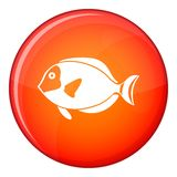 Surgeon fish icon, flat style Stock Images
