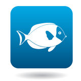 Surgeon fish icon, simple style Stock Photos