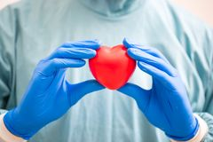 Surgeon holding a Heart.Anatomy human Heart model. royalty free stock photo