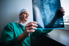 Surgeon sitting at window and checking x-ray Stock Image