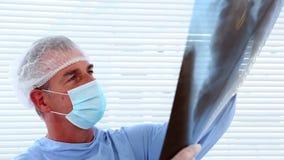 Surgeon studying an xray Royalty Free Stock Photo