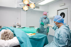Surgical team performing operation Royalty Free Stock Images