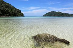Surin beach national park, Phangnga. Clear water at surin beach national park, Phangnga Royalty Free Stock Images