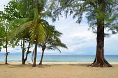 Surin Beach in Phuket Royalty Free Stock Images