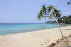 Surin beach Royalty Free Stock Photo