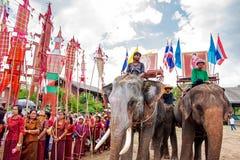 SURIN, TAILANDIA - 16 DE MAYO: Desfile de la ordenación en la F trasera del elefante Imagen de archivo libre de regalías