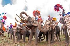 SURIN, TAILANDIA - 16 DE MAYO: Desfile de la ordenación en la F trasera del elefante Imagenes de archivo