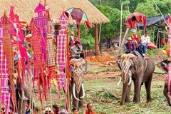 SURIN, TAILANDIA - 16 MAGGIO: Parata di classificazione sulla F posteriore dell'elefante Immagine Stock
