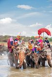 SURIN, THAILAND - MAY 16: Traditional parade to the river as an Stock Photo