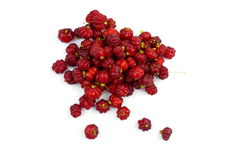 Surinam Cherry Royalty Free Stock Photo