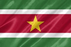 Surinam flagga vektor illustrationer