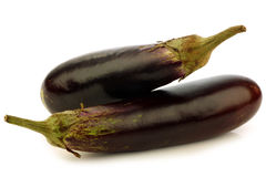 Suriname aubergines Royalty Free Stock Photography