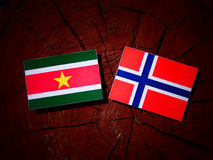 Suriname flag with Norwegian flag on a tree stump isolated Royalty Free Stock Photos