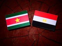 Suriname flaga z egipcjanin flaga na drzewnym fiszorku Zdjęcia Stock