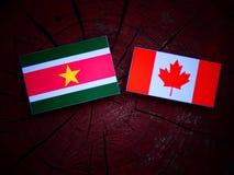 Suriname flaga z kanadyjczyk flaga na drzewnym fiszorku odizolowywającym obrazy royalty free