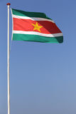 Surinamese flag. Blowing in the wind Stock Photo
