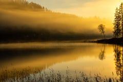 Surise autunnale nebbioso a Jonsvatnet, Norvegia immagini stock libere da diritti