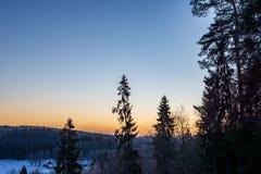surise d'hiver au-dessus des champs de campagne et forêt dans le froid photo libre de droits