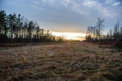 surise d'hiver au-dessus des champs de campagne et forêt dans le froid photographie stock
