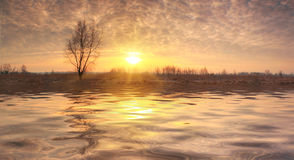 Surise under the river in spring Stock Photography