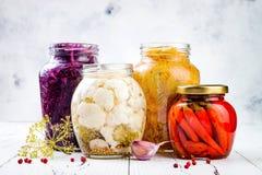 Surkålvariation som bevarar krus Hemlagad rödbetakraut för röd kål, gul kraut för gurkmeja, marinerade blomkålen, röd chili royaltyfri fotografi